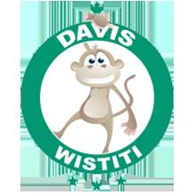 davis-tennis-club-wistiti